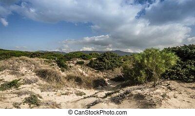 zeit- versehen, playa, punta, paloma, andalusien, spanien