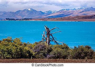 zelândia, lago tekapo, montanhas, novo, paisagem, vista