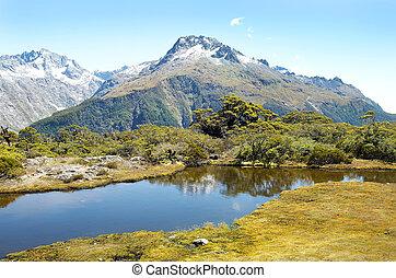 zelândia, magnífico, paisagens, novo