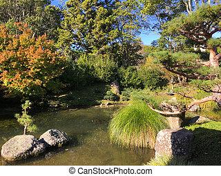 zelândia, novo, jardim