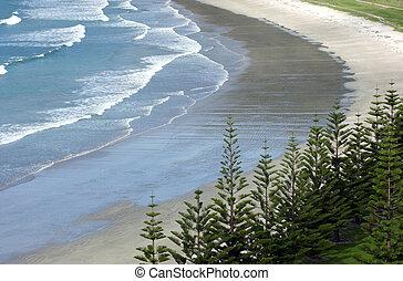 zelândia, novo, praia