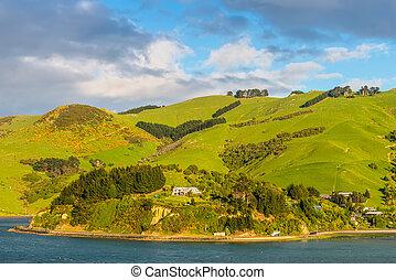 Zelândia,  Otago, região, litoral, Novo, paisagem