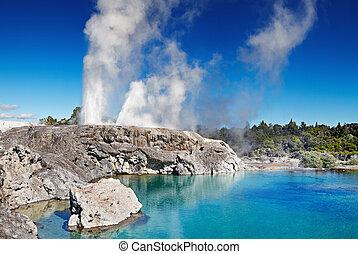 zelanda, nuovo, geyser, pohutu