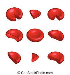 zellen, abbildung, freigestellt, vektor, blut, rotes