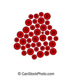 zellen, abbildung, vektor, blut, weiß rot