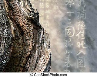 zen abstract image - zen image of the sharp dead tree...
