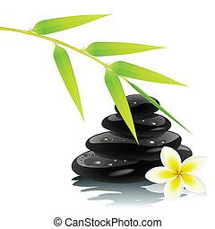 zen, ambiente
