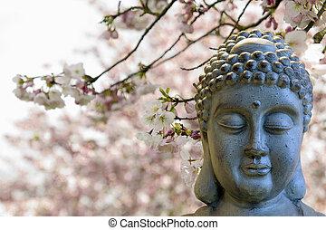 zen, buddha, meditar, sob, flor cereja, árvores