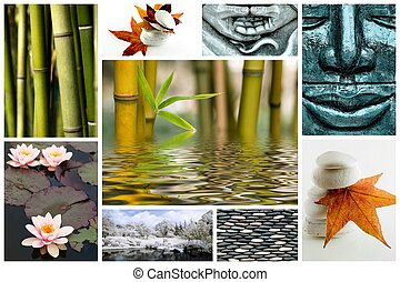 zen, como, imagen, collage
