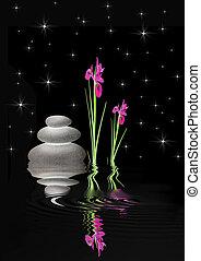 Zen Fantasy Garden