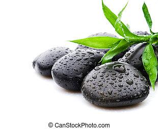zen, fekete, megkövez, ásványvízforrás, és, egészségügyi ellátás