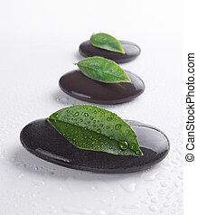 zen, feuilles, pierres
