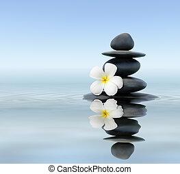 zen, frangipani, kamienie