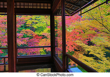 zen garden at Rurikoin, all viewed through a window.
