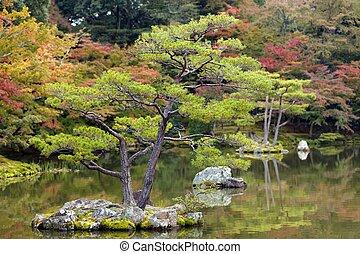 Zen baum kiefer kleingarten kyoto zen japanisches stockfotografie bilder und foto - Japanischer kleingarten ...