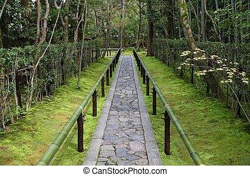 zen jardin, dans, japon