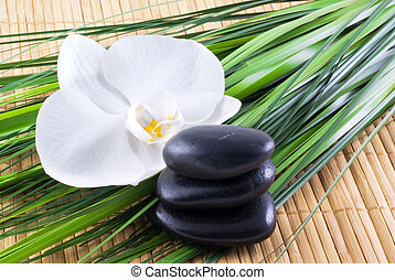Zen-like. - Black zen stones with white orchid and blades of...