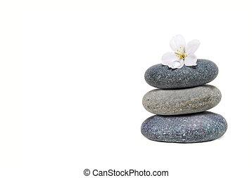 Zen Like - spa stones and flower