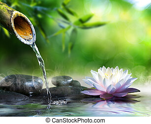 zen, massaggio, giardino, pietre