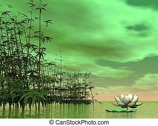 zen, natura, -, render, 3d