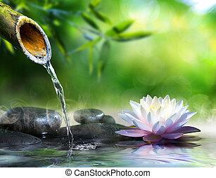zen ogród, z, masaż, kamienie