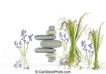 zen ogród