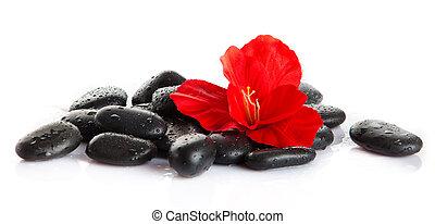 zen, pebbles., megkövez, ásványvízforrás