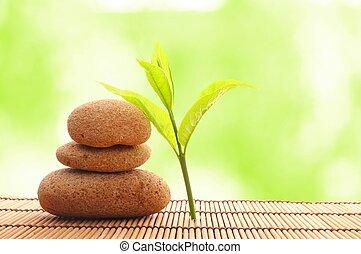 zen, pietra, foglia