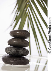 zen, sten