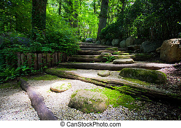 Zen Steps - Light leading into dark forest in Japanese zen...