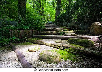 Zen Steps - Light leading into dark forest in Japanese zen...