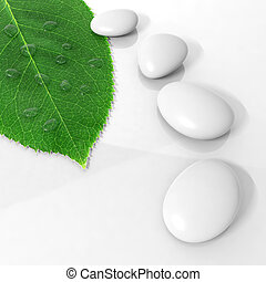 Zen stones in a row and green leaf with water