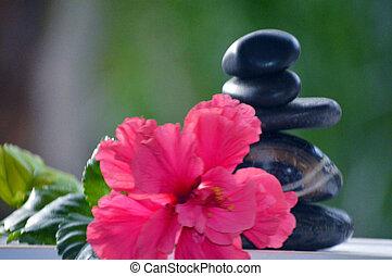 Zen stones pink hibiscus flower balance concept background