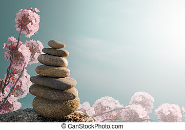 Zen Stones with field and flowers in back