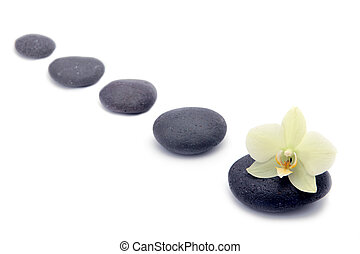 zen stones with orchids flower isolated. spa background