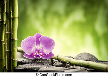 zen stones - zen basalt stones ,orchid and bamboo