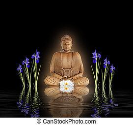 zen tuin, boeddha
