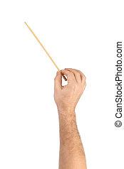 zene, karmester, kéz