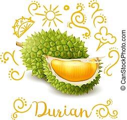 zenemű, gyümölcs, doodles, durian, egzotikus