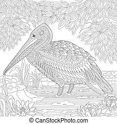 Zentangle stylized pelican bird - Coloring page of pelican...