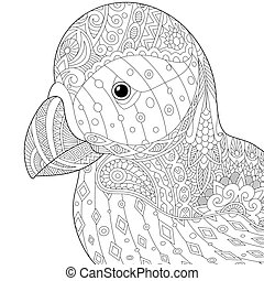 Atlantic Puffin Coloring Page Sea Bird On White