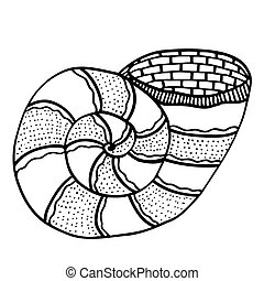 Zentangle stylized shell.