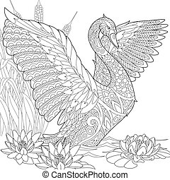 Zentangle stylized swan - Coloring page of swan among water...
