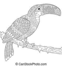 Zentangle stylized toucan