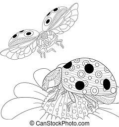 Zentangle stylized two ladybugs