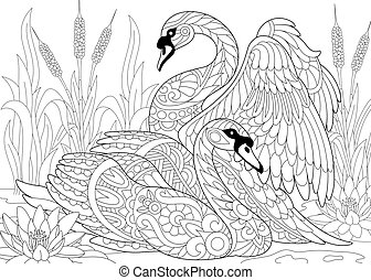 Zentangle stylized two swans - Coloring page of two swans...