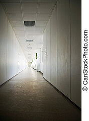 zentrieren, geschaeftswelt, korridor