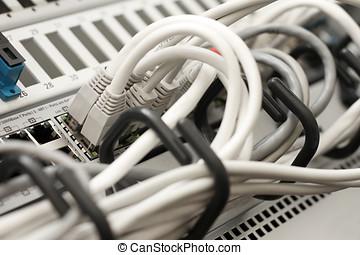 zentrieren, kabel, server, technologie, daten, vernetzung