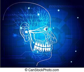 zenuwbaan, abstract, achtergrond, teeth
