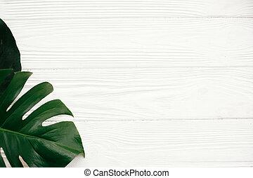 zero, terme, spazio, lay., cima, monstera, bianco, spreco, amichevole, appartamento, eco, text., fondo, legno, wellness, foglie, verde, elegante, concept., summer., ciao, vista